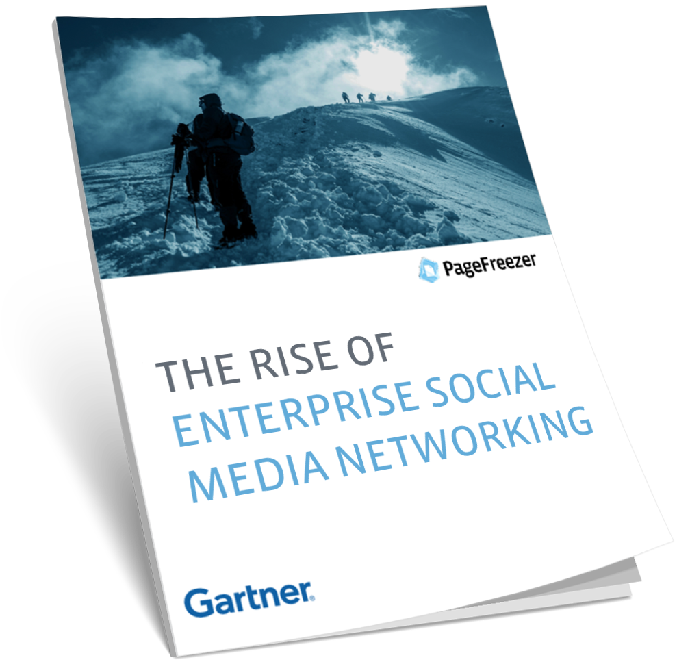 THE RISE OF ENTERPRISE SOCIAL MEDIA NETWORKS